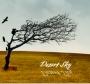 Hewitt - Desert Sky